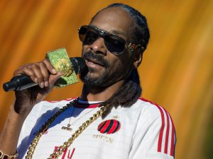 Are You Snoop Dogg or Snoop Lion?